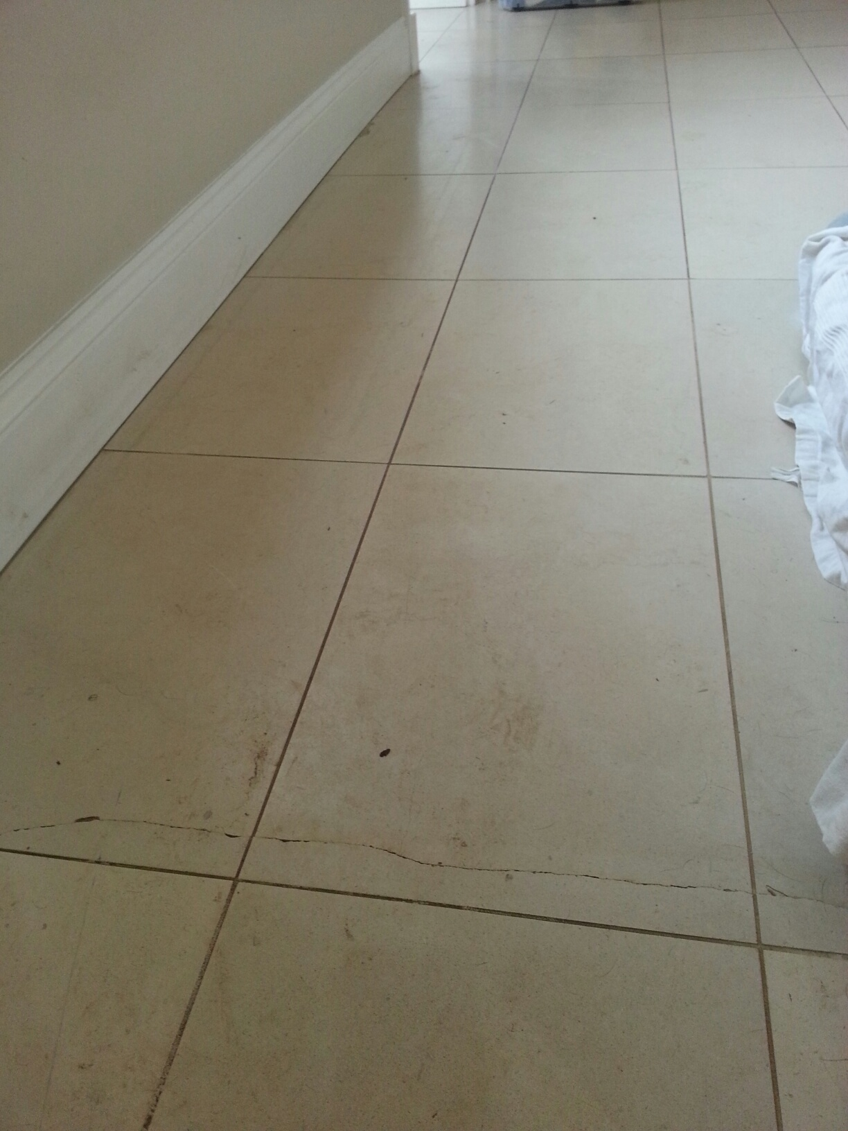 Limestone Tiles in Louth Before Cleaning Cracked